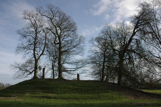 Motte in the village of Kingsland