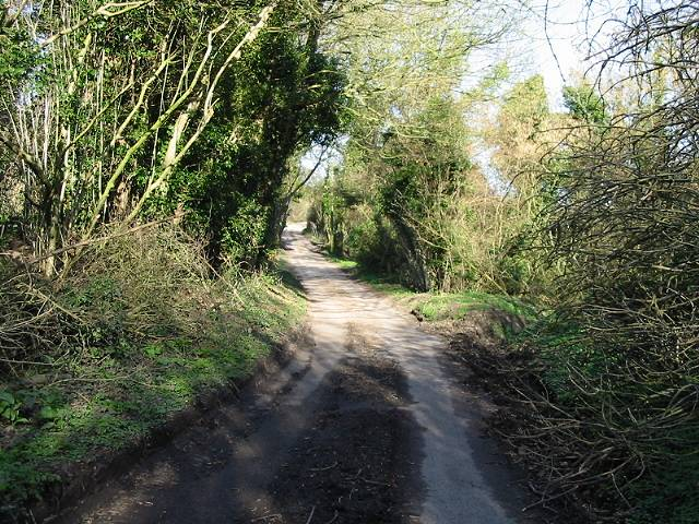 Looking NE along Wickham Bushes Road