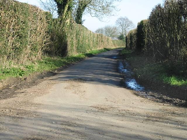 Ferne Lane from Chalksole Green Lane