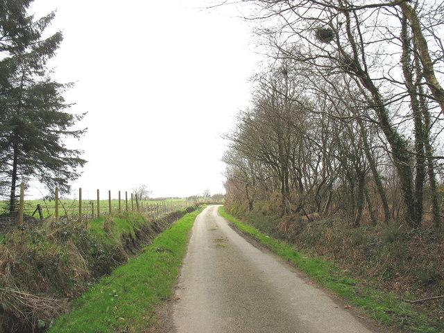 The Pentir road near Rhos Fawr