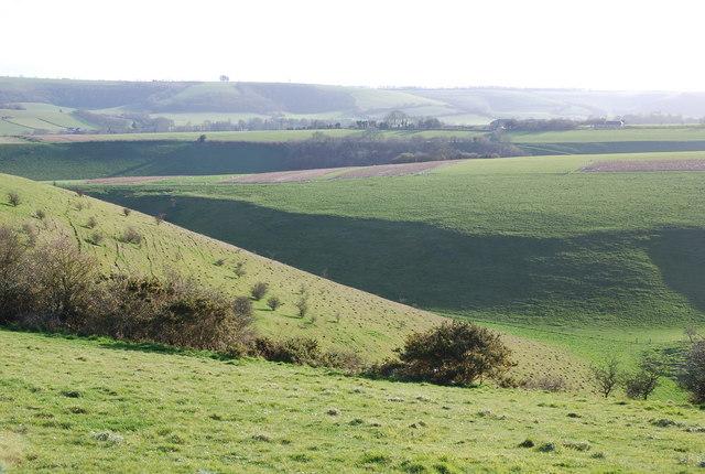 Slopes of Ebbesborne Down