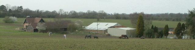 Dent's Farm