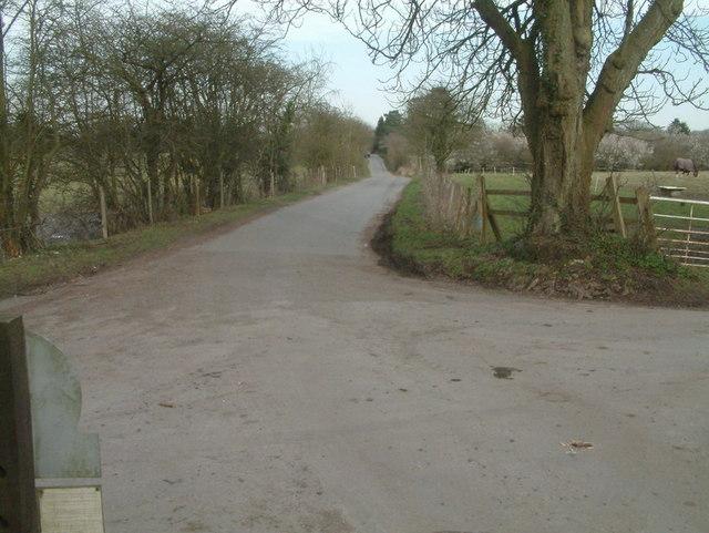 Margery Lane