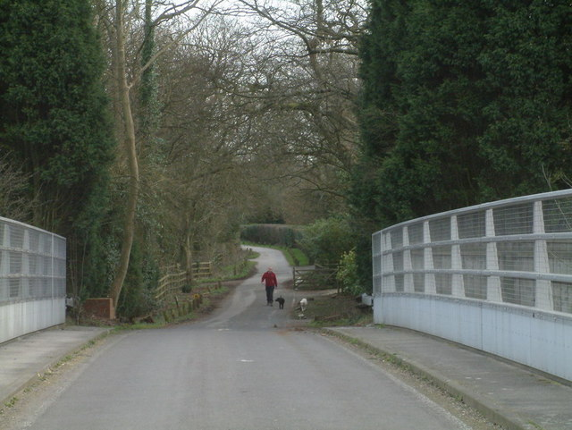 Lane leading to Colley Hill