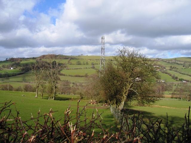 Hedge Line and Pylon