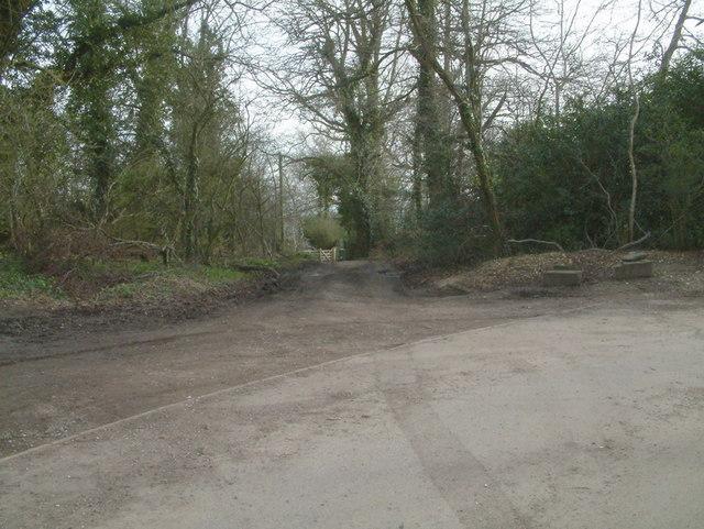Bridleway at Reigate Hill
