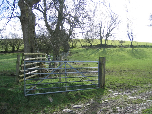 Field Gate and Hedge Lines