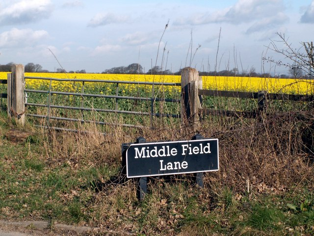 Middle Field Lane