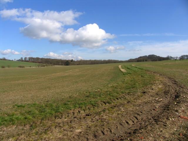 View towards Botany Bay Covert