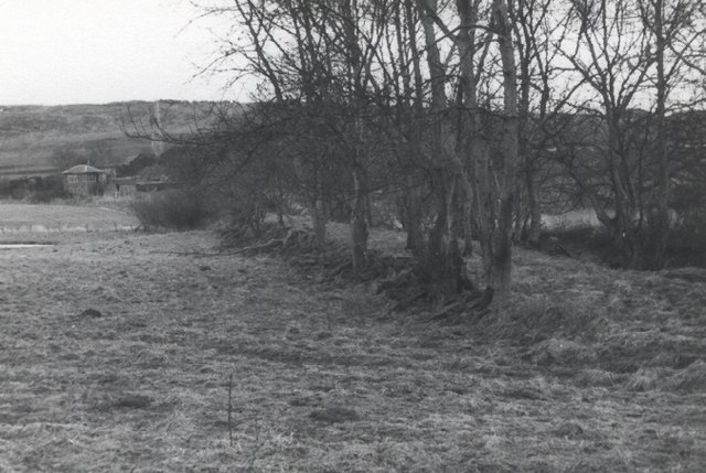 Track of the original Dundee to Newtyle Railway at Rosemill