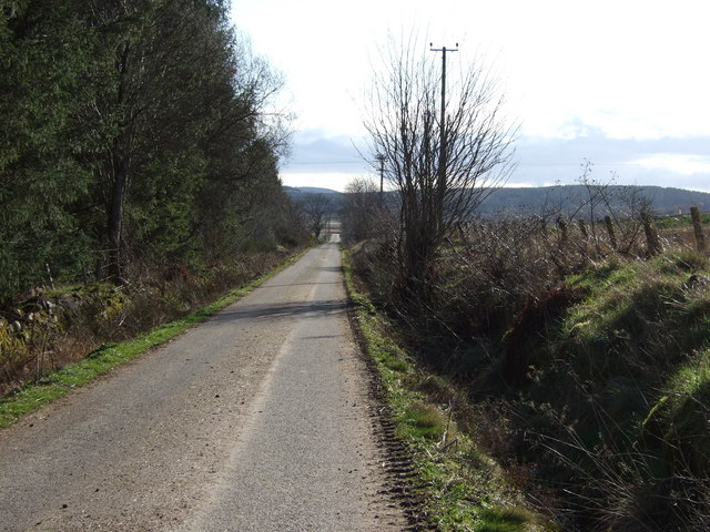 Road from Nether Tillylair