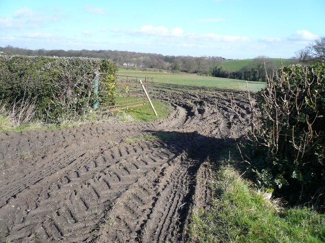 Malthouse Lane - Field Access