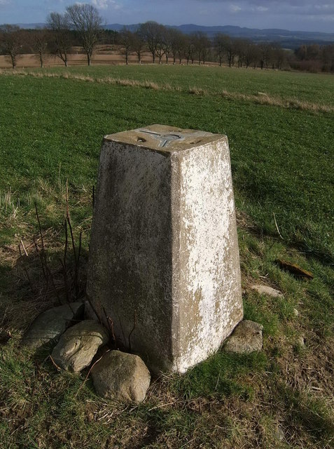 Trig Point at East Cult Farm