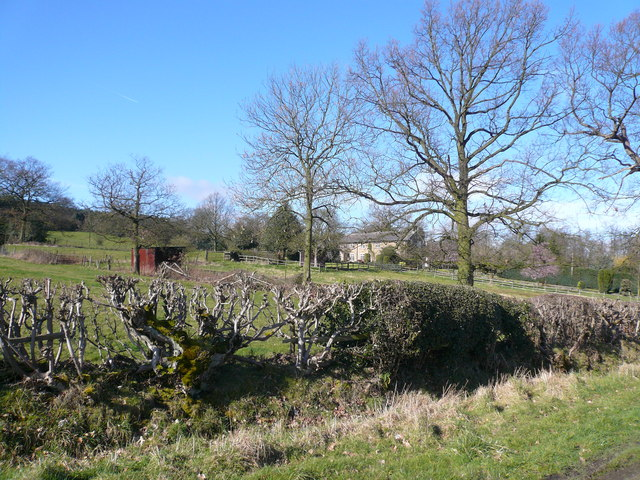 Malthouse Lane - View across field to Cottages