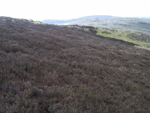 Moorland on the Slacks