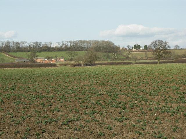 View to Arthingworth Lodge