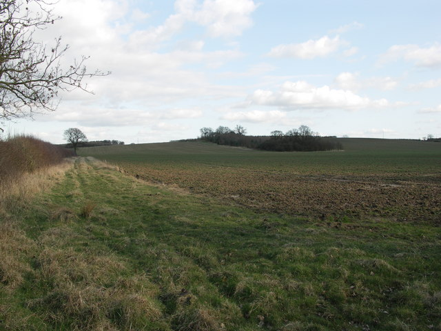 View to Sixteen Spinney.