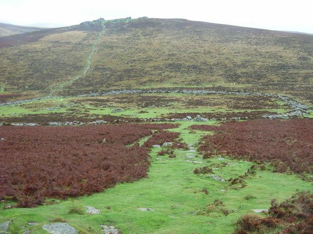 Grimspound Antiquity, Dartmoor