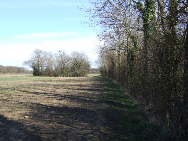 Looking Back on Path to Broaden Lane