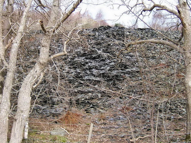 Disused slate quarry waste
