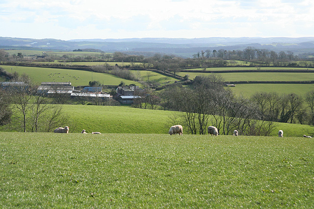 Poughill: towards Park Farm