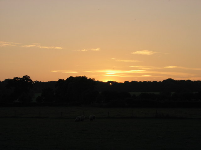 Foxley Road Sunset