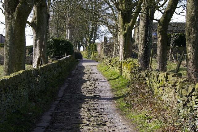 Footpath above Haworth