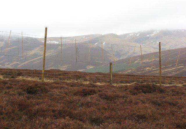 Deer fence, Bada na Goibhre