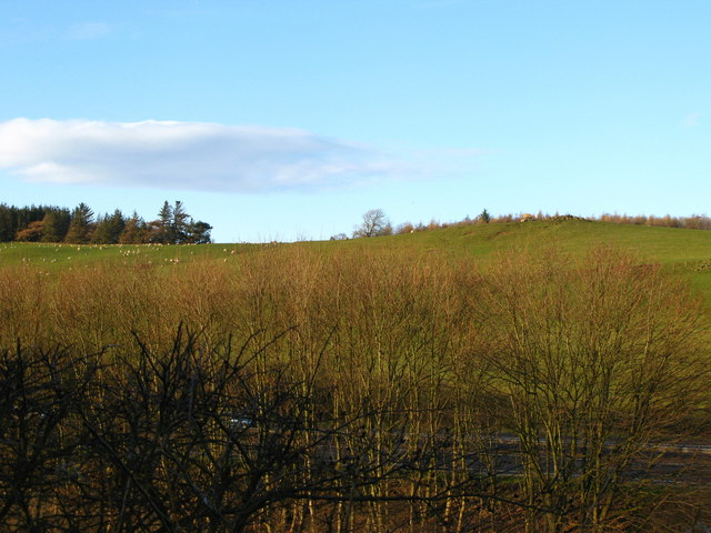 View to Pitillock