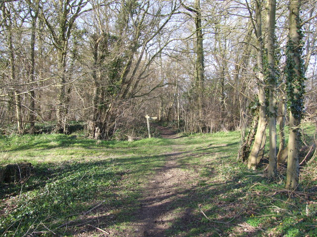 Start of Footpath through the Woods