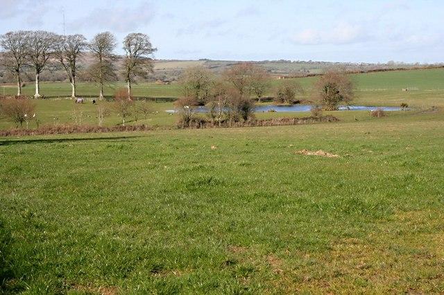 Pasture and Pond on Tengrove Farm