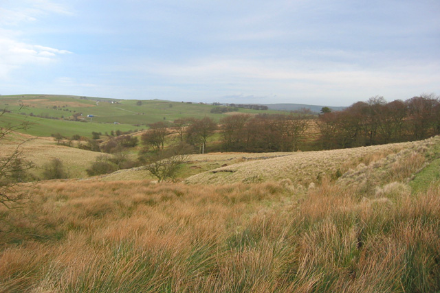 View towards stream valley at Boarsgrove