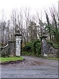 R3948 : Entrance, Curragh Chase Forest Park, Co. Limerick by Peter Gerken
