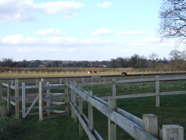 Gate and Paddocks, Redwings Horse Sanctuary
