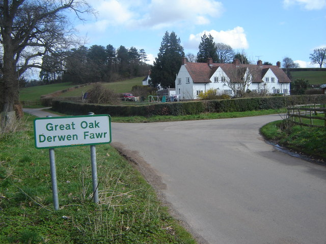 Junction at Great Oak (Derwen Fawr)