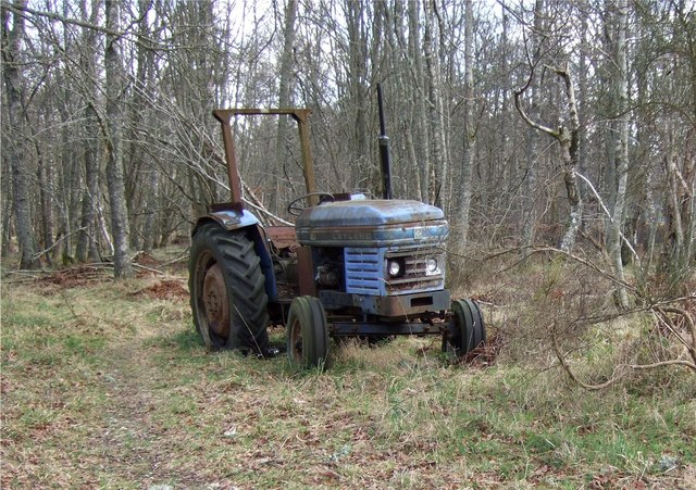Tractor in woodland