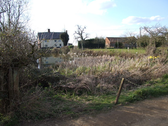 Grove Farm and Pond