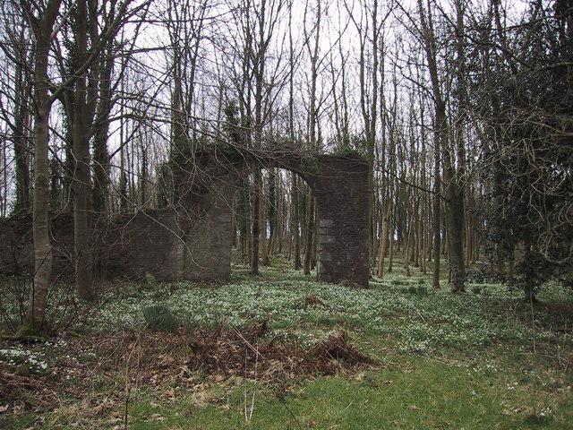 Ruin, Big Plantation