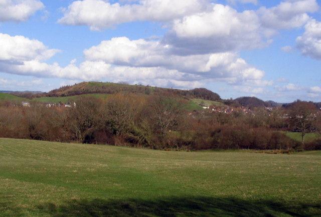 Allington Hill