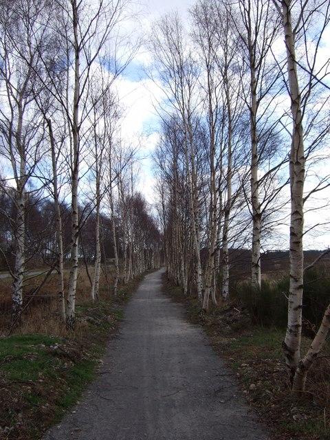 Bridle way