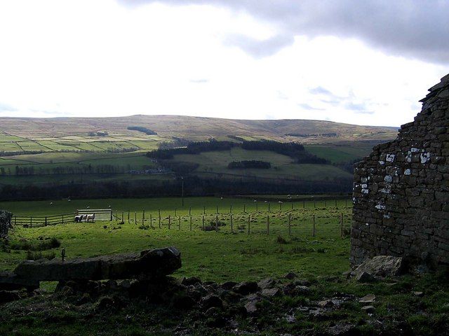 Weardale viewed from Spain's Field Farm