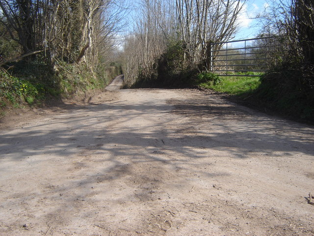 Country lane from junction with another country lane