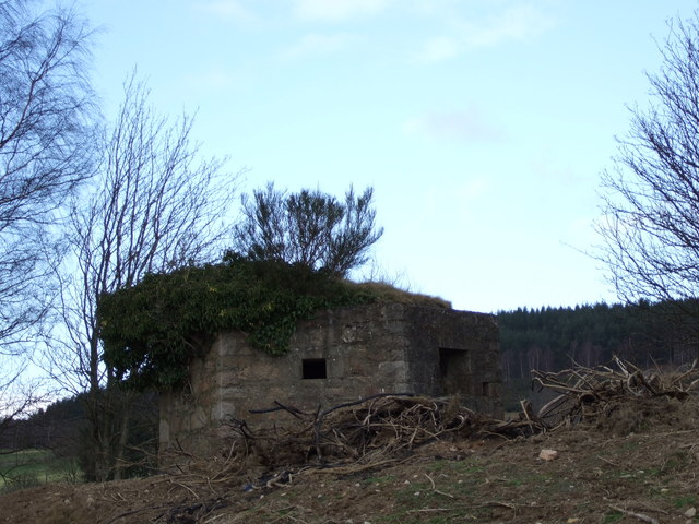Hexagonal building (ruin) near Heugh-head