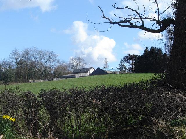 Bottom Farm