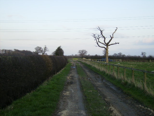 Rough track to Laund House Farm