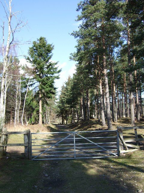 Gated entrance to Aboyne Castle estate