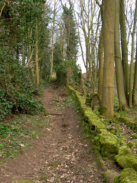 Footpath to Gospel End