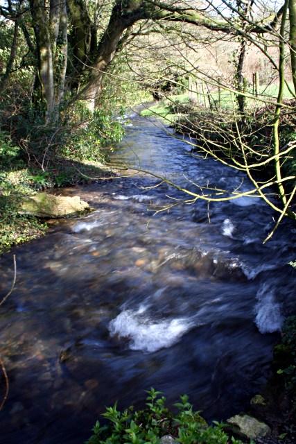 Stream below Rosecraddoc