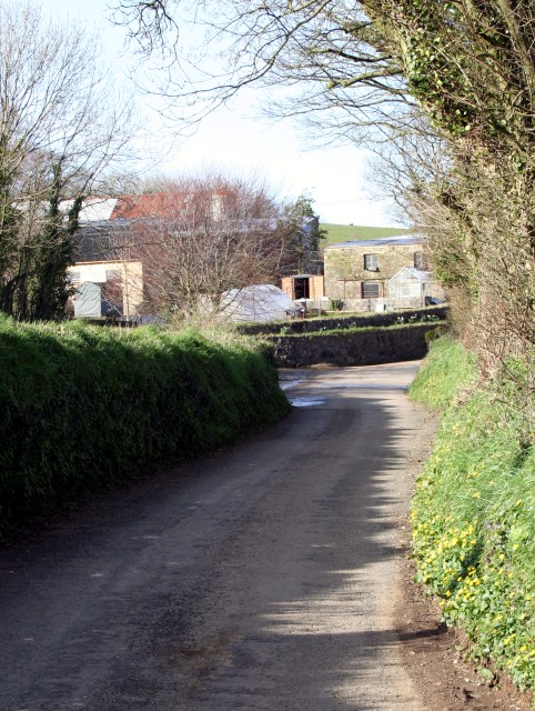 The road past Ford Farm.