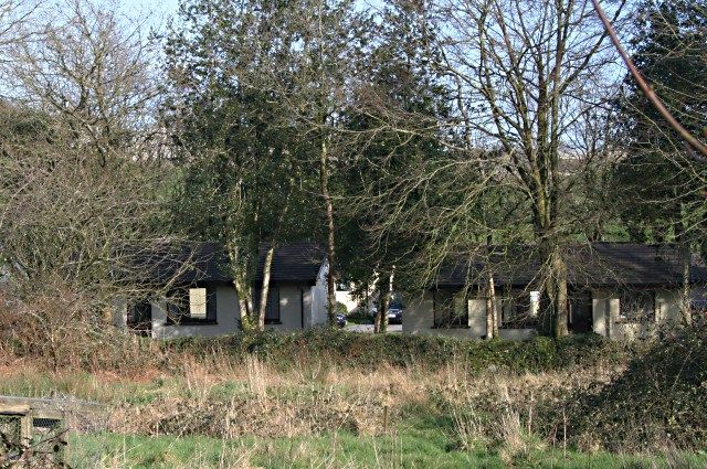 Holiday cottages behind the trees